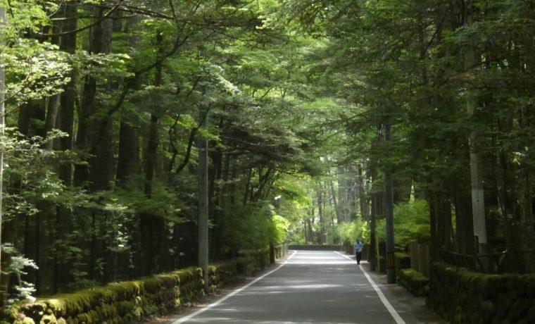 軽井沢町自然保護対策要綱