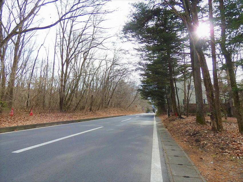 軽井沢 グルメ通り